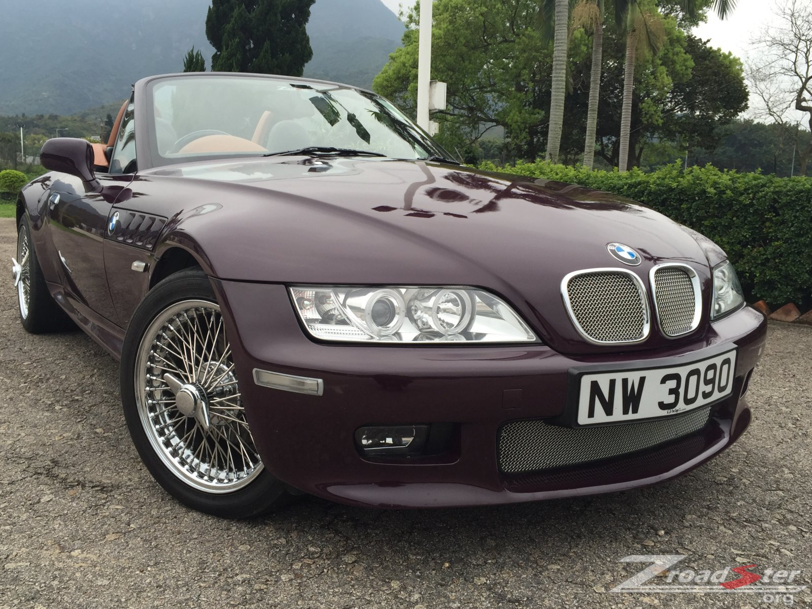 the mesh grills enchance the classic look bmw z1 z4 z8 z3 forum and technical database. Black Bedroom Furniture Sets. Home Design Ideas